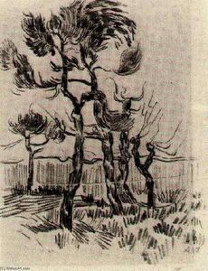 Vincent Van Gogh - Pine Alberi in Front of i Wall of il manicomio 4